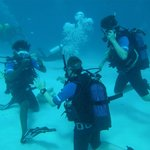 1st Open Water Dive