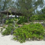 Φωτογραφία: Pigeon Cay Beach Club