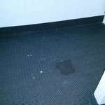 one of the many stains on the carpet, sheets, pillows, walls, curtains etc etc etc