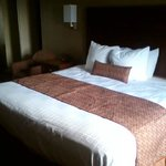 Photo de BEST WESTERN Carriage House Inn & Suites