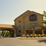 BEST WESTERN PLUS CottonTree Innの写真