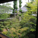 A view of the garden from the room