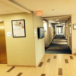 Foto de Holiday Inn Express Meadowlands