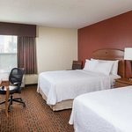 Hampton Inn Houston Staffordの写真