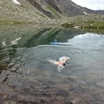 Swinging in a crystal clear lake at 2.600 m above sea level