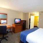 Foto de Holiday Inn & Suites Duluth Downtown