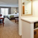 Photo of Holiday Inn St. Louis South / I-55