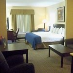 Holiday Inn Express Hotel & Suites Clearwater / US 19Nの写真