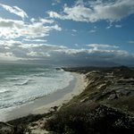 Grootbos Private Nature Reserve의 사진