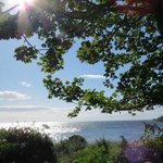 Foto de Darven Cottage B&B Sannox, Isle of Arran