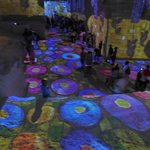 Photo of Carrieres de Lumieres