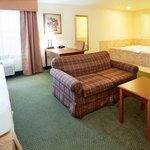 Holiday Inn Express Hotel & Suites Rocky Mount/Smith Mtn Lakeの写真