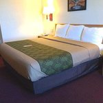 Φωτογραφία: Econo Lodge Truman Inn