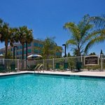 Photo of Staybridge Suites Tampa East - Brandon