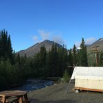 Foto de Denali Mountain Morning Hostel and Cabins