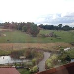 Foto de Chessington Safari Hotel