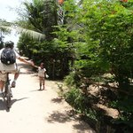 Photo of Grasshopper Adventures Day Tours by Bicycle