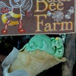 Foto de Bohol Bee Farm