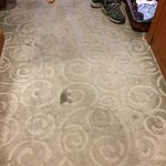 dirty carpet all over the room