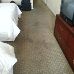 Bilde fra Americas Best Value Inn Missoula