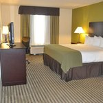 Foto de Holiday Inn Express Sarasota I-75