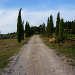 Agriturismo Podere Felceto의 사진