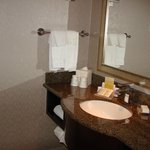 Photo de Hilton Garden Inn Toronto Airport West/Mississauga