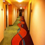 Hotel Corridor - Courtyard by Marriott Washington DC