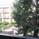 Courtyard Chicago Wood Dale/Itasca Foto