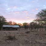 Foto de Serengeti Wilderness Camp