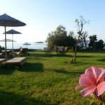 Photo of Angeliki Beach Hotel