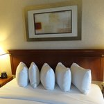 Φωτογραφία: Hilton Washington DC North Gaithersburg