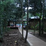 Bilde fra La Cantera Jungle Lodge