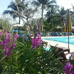 Foto de The Kib Resort & Spa