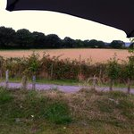 View from tent pitch (Barn Field)