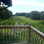 View of winery right off your balcony