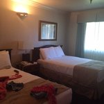 The bedroom was very big and the beds comfortable.