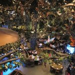 Rain Forest Cafe at MGM Grand Hotel and Casino Foto