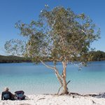 Foto de Kingfisher Bay Resort Fraser Island