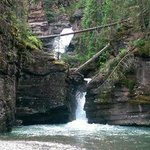 Mild to Wild Rafting and Jeep Trail Tours Foto