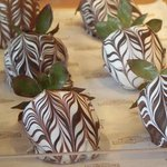 delicious chocolate covered strawberries at the rocky Mt Chocolate Factory!
