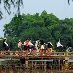 China Absolute Tours - Hangzhou Private One-Day Tours