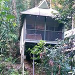 Foto Daintree Eco Lodge & Spa