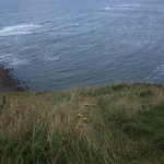Walk along the Cleveland Way somewhere in this photo are Grey Seals!!!