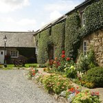 Foto de Nant Yr Odyn Country Hotel & Restaurant Ltd