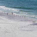 Photo de Hilton Sandestin Beach, Golf Resort & Spa