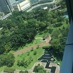 View of park from room