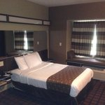 Microtel Inn & Suites by Wyndham Montgomeryの写真