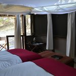 Wilderness Safaris Busanga Bush Camp照片