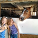 Foto van Farm by the River Bed and Breakfast with Stables